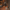 Şanlıurfa'da polislere silahlı saldırı